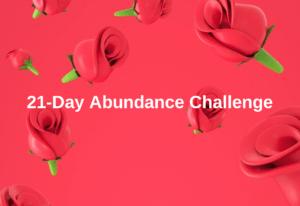 Abundance Challenge