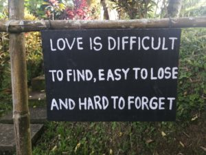 Love is easy to find